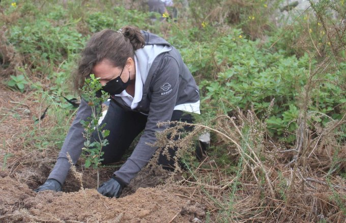 Over 1,700 volunteers working together for a more sustainable world